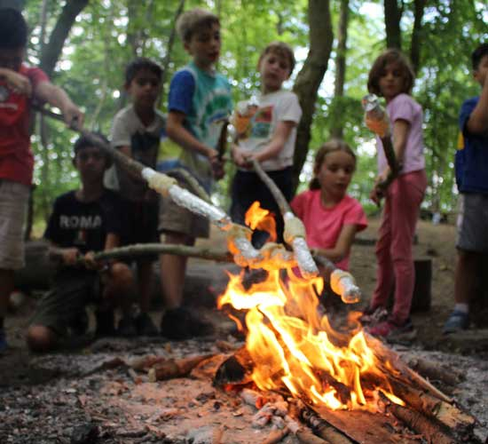5 reasons why your kids need to attend summer camp in 2020